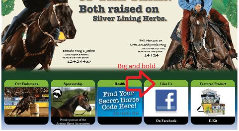 Совет №1: Разместите на сайте заметные (!) кнопки соцмедиа