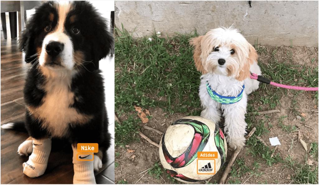 Nike and Adidas - Visual Analysis - Dogs
