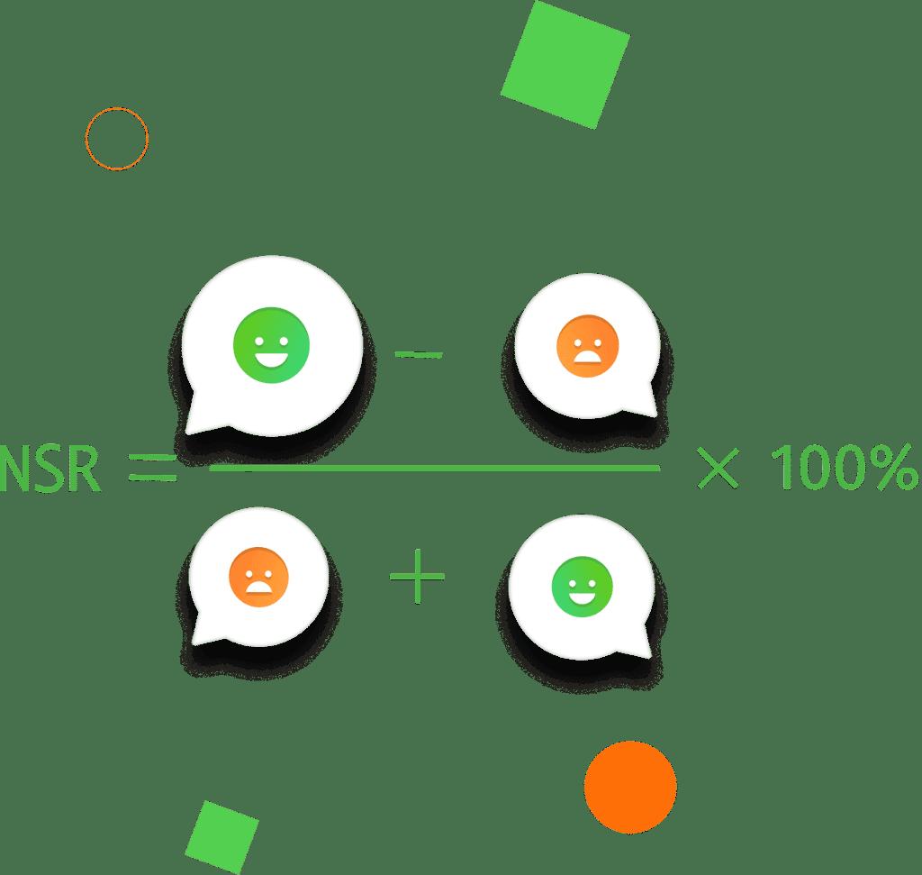 Формула NSR